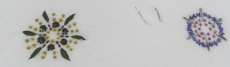 Mandala sneeuw acupunctuur